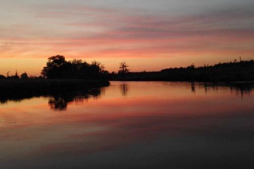 Terwijl de zon langzaam ondergaat ga je op pad met de kano. Is het helemaal donker als je terugkomt? Kanovaren in het donker is een unieke en bijzondere ervaring die je kunt beleven bij De Wilgenweard. Je ziet rivier de Regge en de omgeving eens op een andere manier.